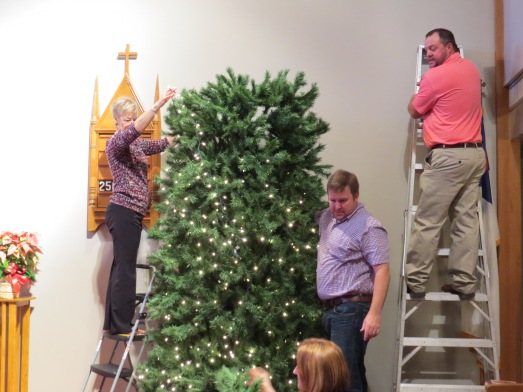 Christmas Tree 2014 set up ladders
