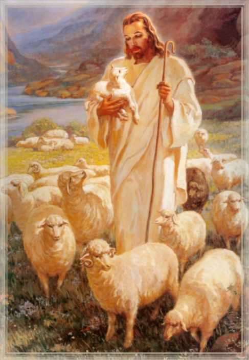 Good Shepherd Jesus